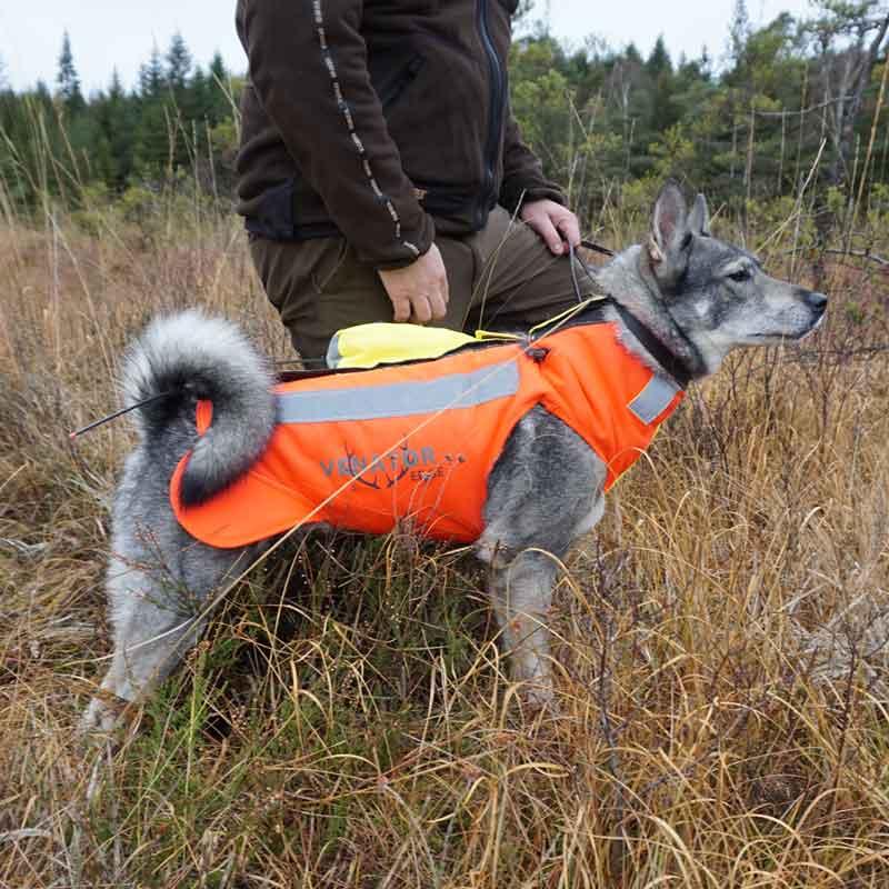 Skyddsväst hund